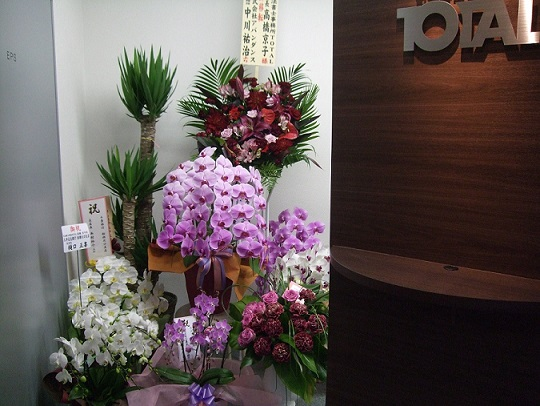 船橋駅前オフィス開店祝い花.jpg